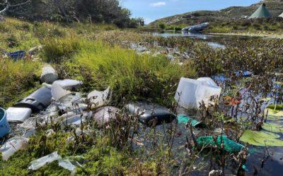 Handelens Miljøfond støtter prosjekter som reduserer plastforsøpling, øker plastgjenvinning og reduserer forbruk av plastbæreposer. Fondet finansieres gjennom medlemmene som betaler 50 øre for hver plastbærepose de omsetter i Norge. Foto: Handelens Miljøfond